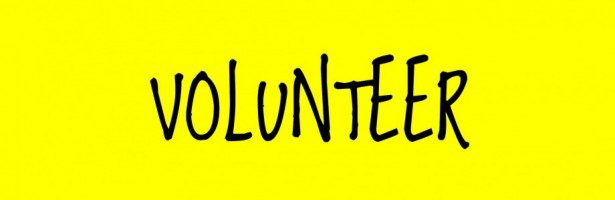 how to put volunteer work on application