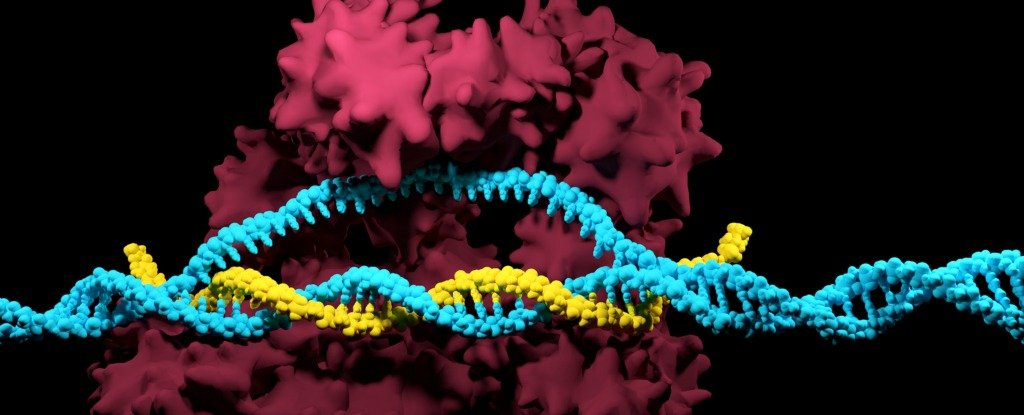 application of recombinant dna technology in disease diagnosis