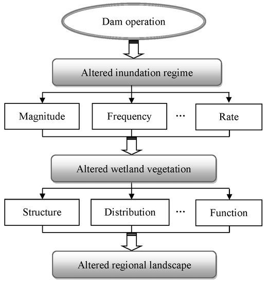 application of remote sensing in forest management