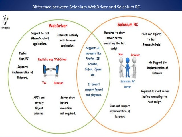 difference between website and web application
