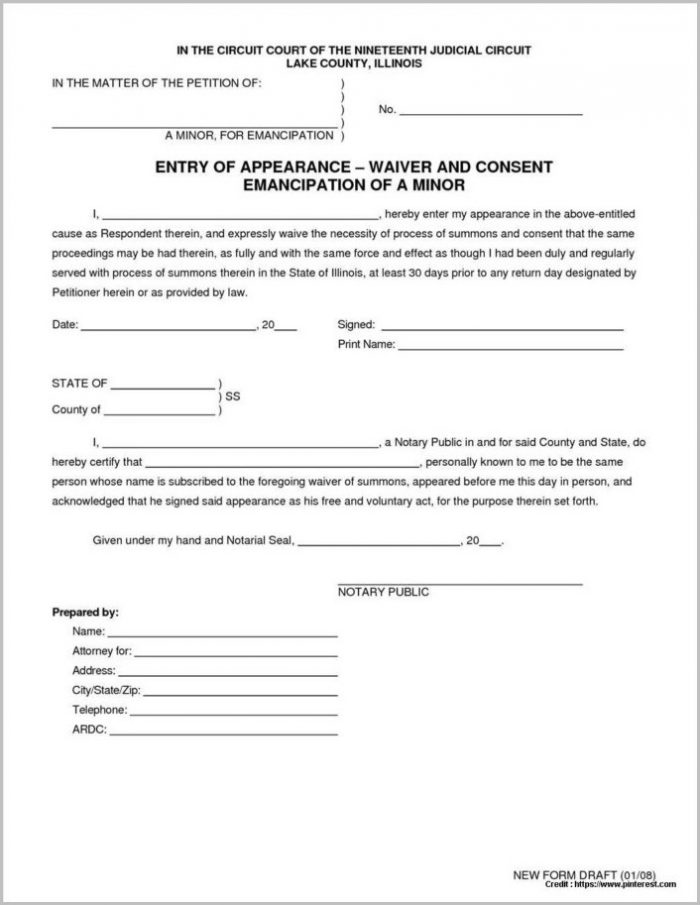 american eagle outfitters job application form