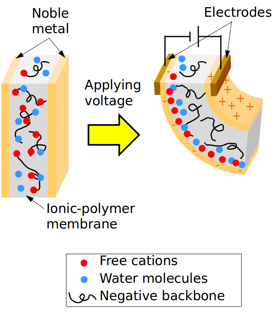 polymer structure properties and applications